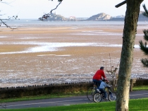 Picture of Swansea(Image: Swansea)