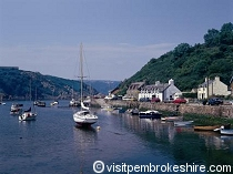 Picture of Fishguard(Image: Fishguard)