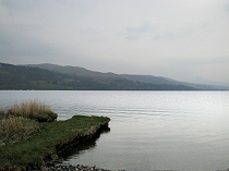 Picture of Bala(Image: Bala)