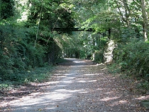 The track follows path of the old railway bed.