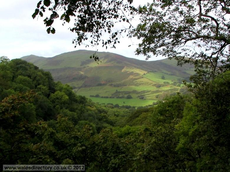 Enlarged picture of A view to Foel Wyllt