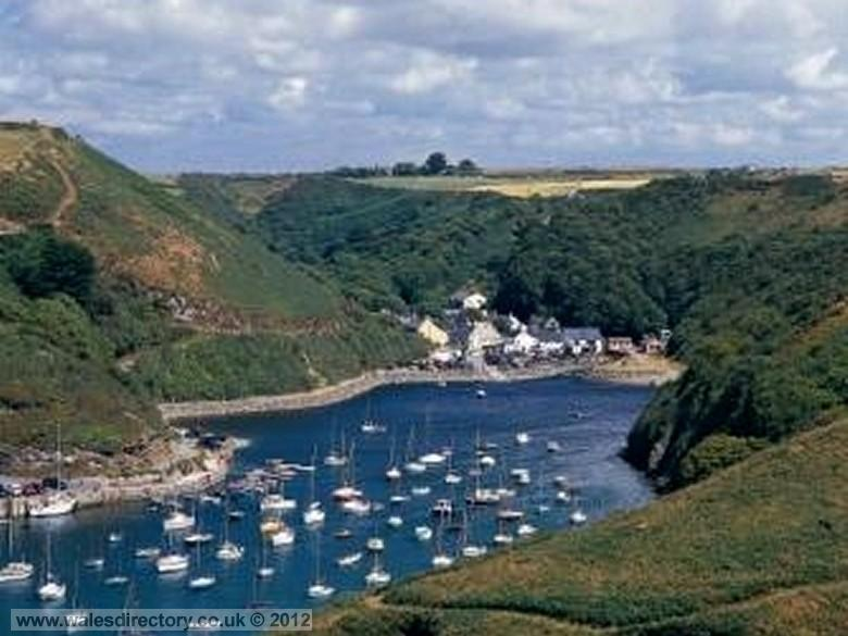 Enlarged picture of Boats in Solva Harbour