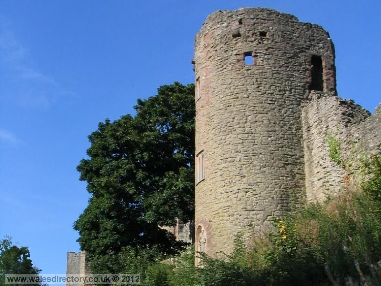 Enlarged picture of Welsh Border Castle