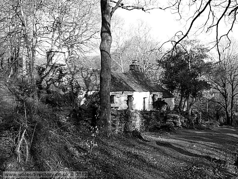 Enlarged picture of Pen-y-Groes Cottage in Black and White