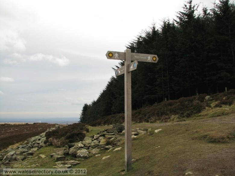 Enlarged picture of Finger Post on Clwydian Trail