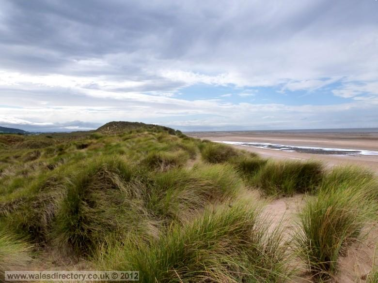 Enlarged picture of Talacre Sand Dunes