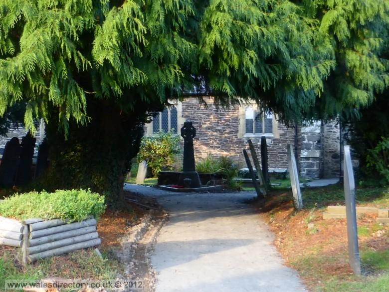 Enlarged picture of Ancient Yew Tree at Conwy Church