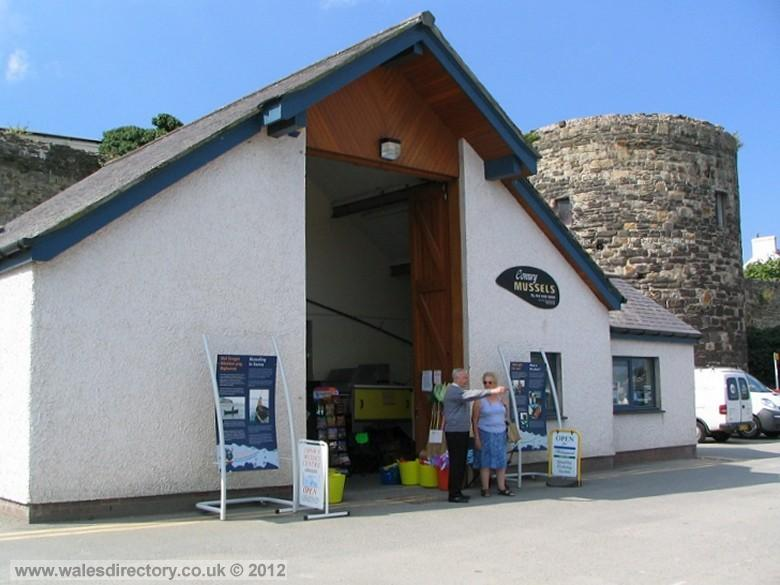 Enlarged picture of Conwy Mussel Museum